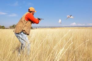 Pheasant_hunting_albion_idaho_5442_LR